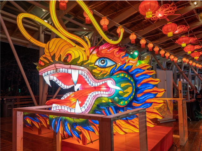 A dragon lantern head that festival guests can get close to.