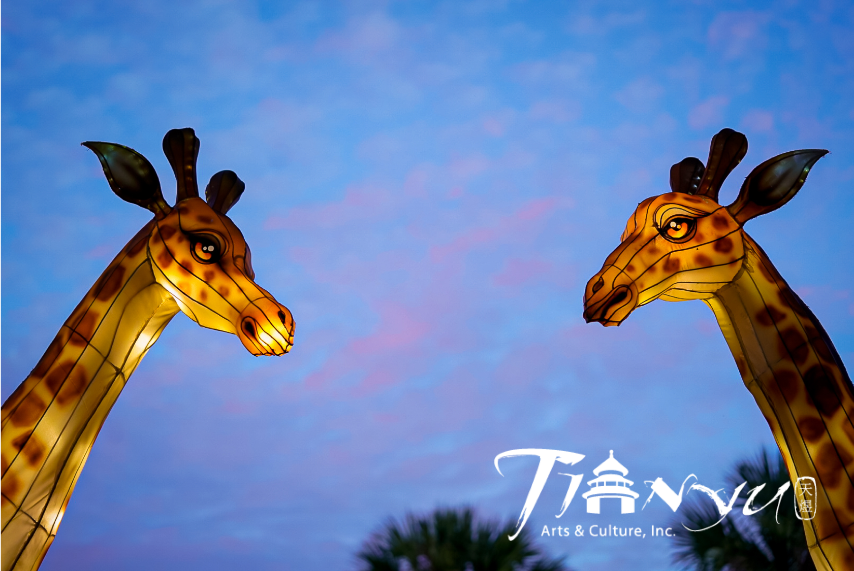 Two Chinese lantern giraffes sit in the sunset