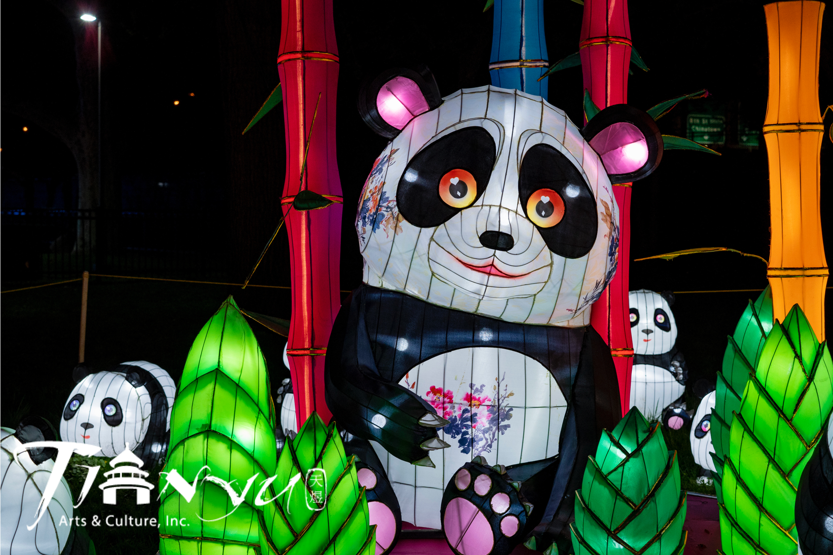 An adorable panda family sits in bamboo.