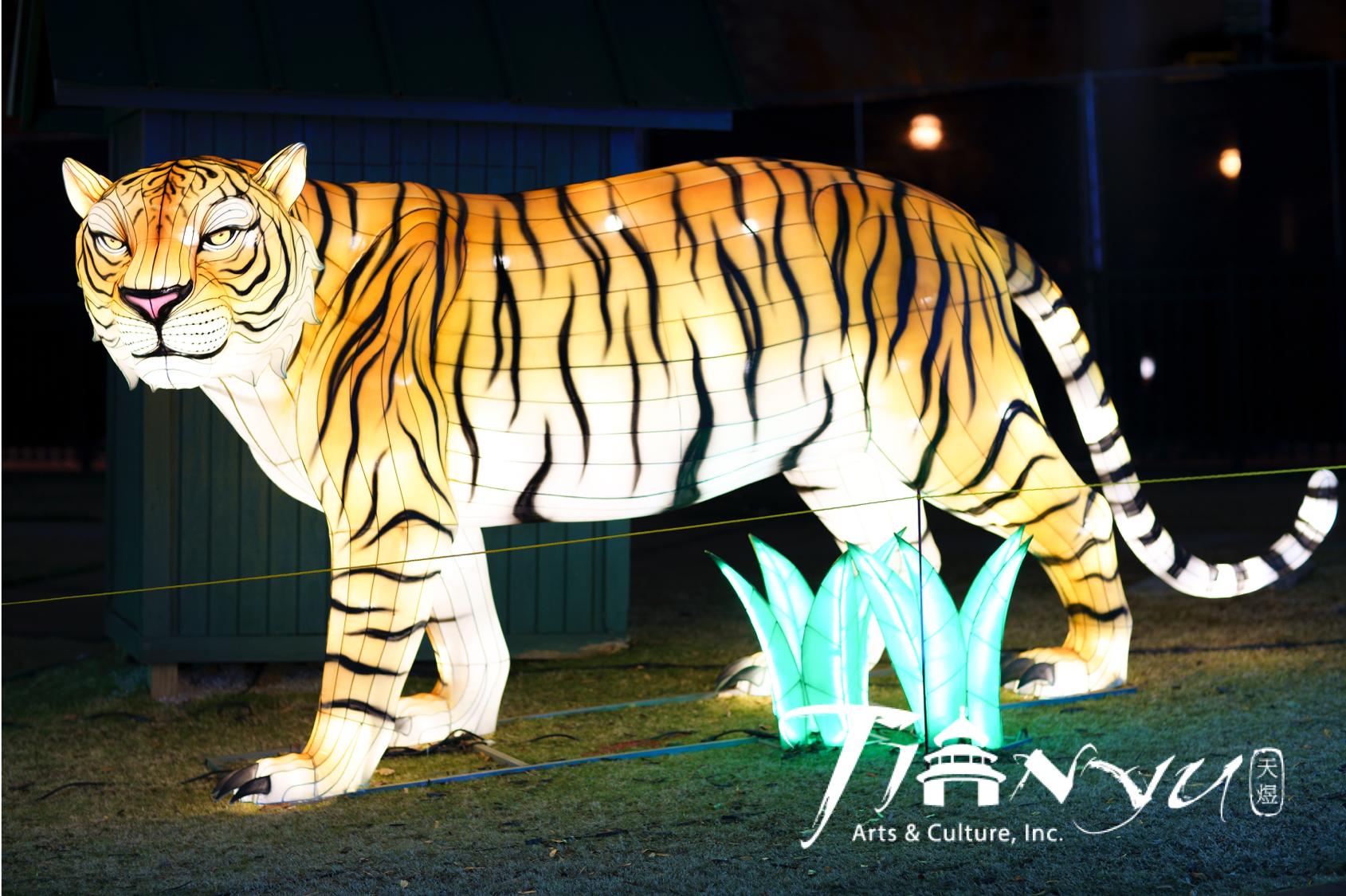 A larger than life tiger stares in the distance.