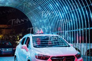 Attendees at Cleveland Metroparks Zoo were able to enjoy our Chinese lanterns with a new drive-through experience. Photo by Edmond Wong.