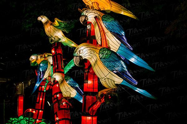 Parrot Chinese Lanterns